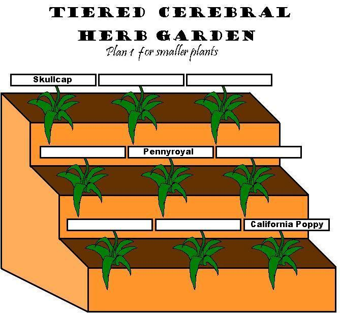Simple Tiered Garden Plans 1u00262