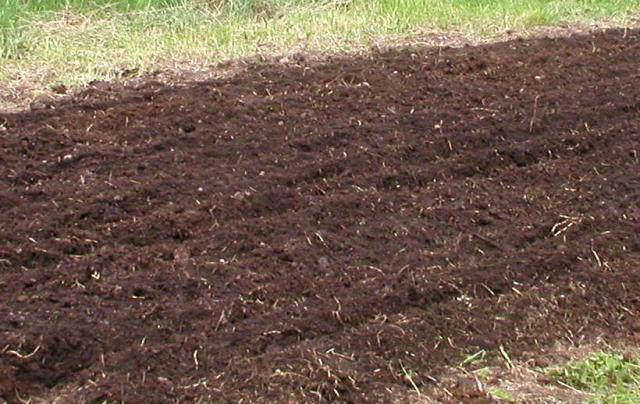 nice dirt - Garden Dirt