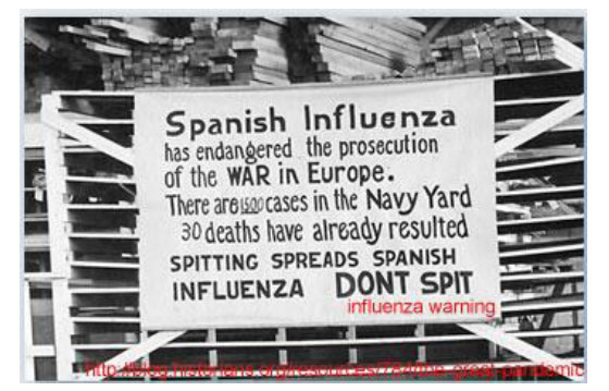a history of the influenza epidemic in world war i The 1918 influenza pandemic  1918 influenza epidemic on the christchurch city  ncea history, junior social studies and history, first world war.